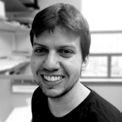 Thiago Borges, PhD